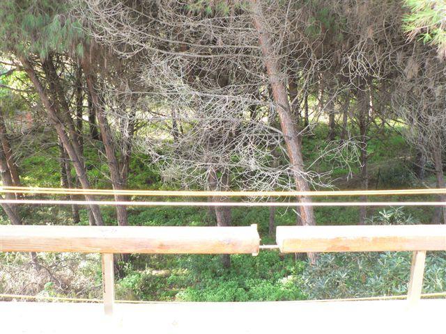 Maison Arboriamar 900m Plage Marina di Sorso Platamona Sardaigne