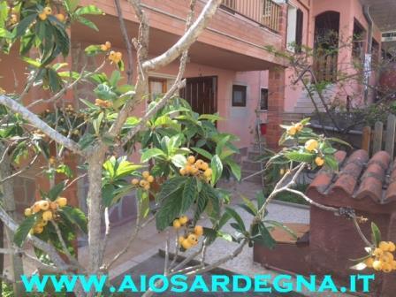 Ferienhaus villa Haus wohnung direkt am meer Carloforte auf der insel San Pietro, Sardinien