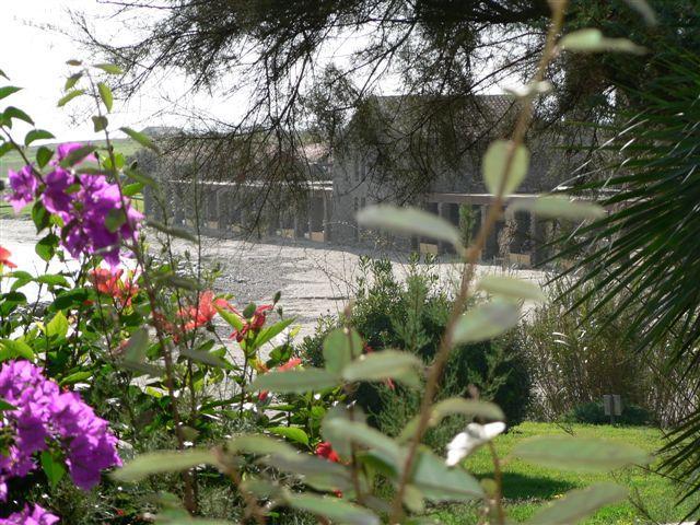 Villa Pieds Dans L'eau Plage Le Tonnare Stintino Sardaigne Nord