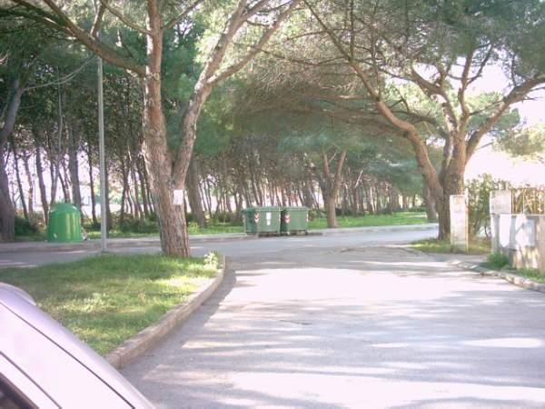 CALIK Fertilia 300 m vom strand, Wohnung, Urlaub Alghero