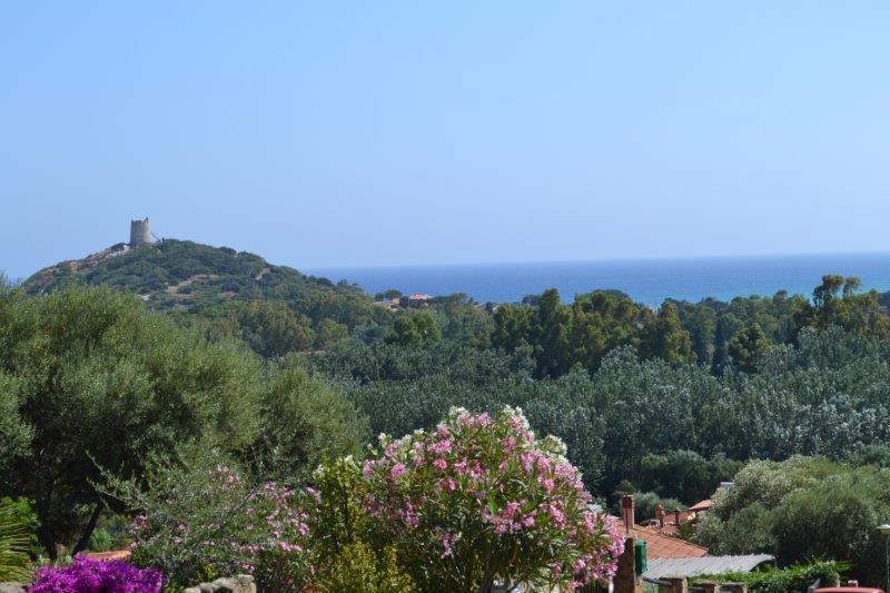 Ferienwohnung urlaub B 700m Strand von Chia-Sardinien
