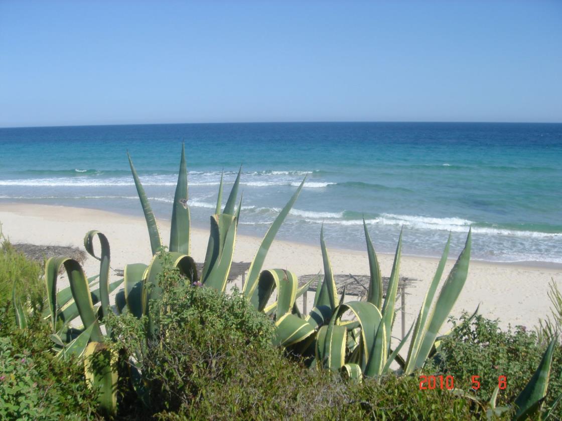 Панорамная вилла в 150метрах от моря в Санта Маргарита ди Пула